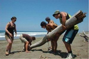 Voluntarios en Costa Rica